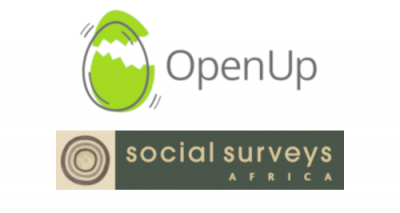 openup-social-surveys-institute-osf-sa-SAElections2019